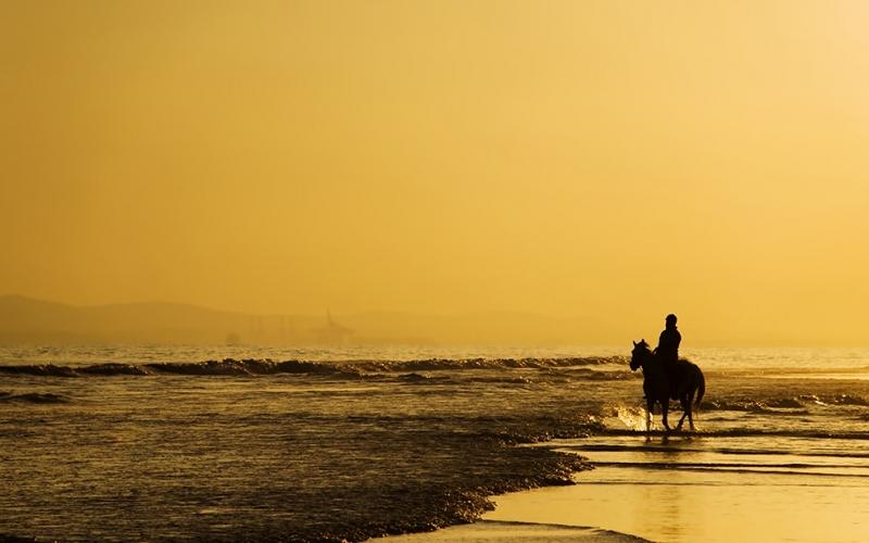 Sahil Doğa Manzaraları Kanvas Tablo