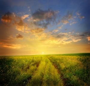 Sahilde Gün Batımı 6 Doğa Manzaraları Kanvas Tablo