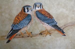 Şahin, Vahşi Kuşlar-6 Hayvanlar, Kuş Temalı Kanvas Tablo