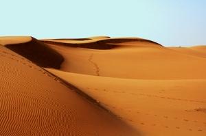 Sahra Çölü Doğa Manzaraları Kanvas Tablo