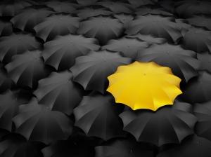 Sarı ve Gri Çerceveler Fotoğraf Kanvas Tablo