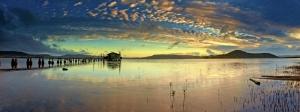 Sazlıkta Gün Batımı Panaromik Kanvas Tablo