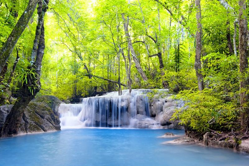 Şelale Orman ve Yeşillik Manzarası Kanvas Tablo