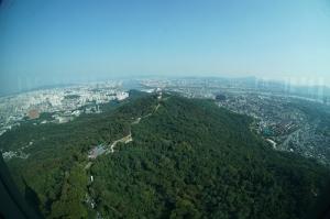 Seul Fotoğraf Kanvas Tablo