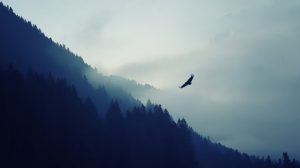 Sisli Dağ ve Kartal Doğa Manzaraları Kanvas Tablo