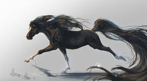 Siyah Beyaz At Fantastik Hayvanlar Kanvas Tablo