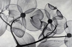 Siyah Beyaz Çiçekler   Dekoratif Modern Kanvas Tablo