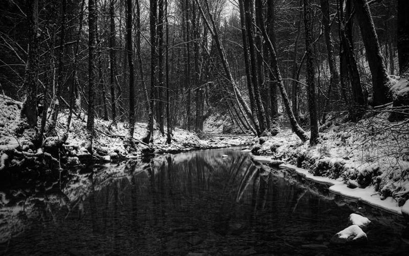 Siyah Beyaz Kar Manzarası Doğa Manzaraları Kanvas Tablo