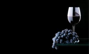 Siyah Üzüm ve Şarap Lezzetler Kanvas Tablo