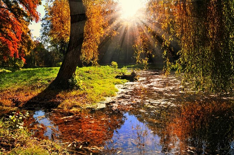 Sonbahar ve Dere Manzarası Kanvas Tablo