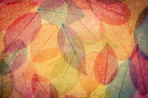 Sonbahar Yaprakları Abstract Dijital ve Fantastik Kanvas Tablo
