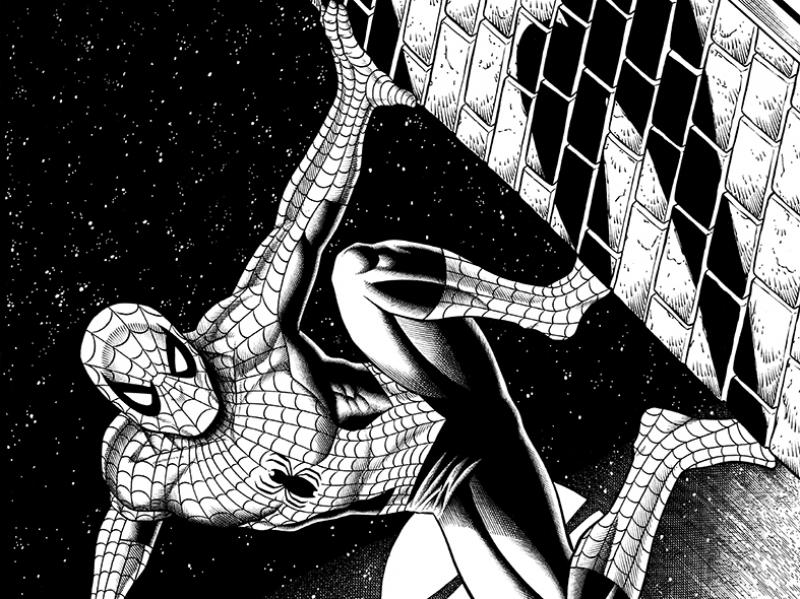 Spiderman Siyah Beyaz Çizim Süper Kahramanlar Kanvas Tablo