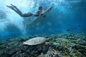 Su Altında Surf Spor Kanvas Tablo