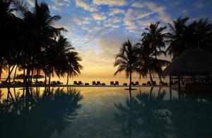 Tatil Yeri Palmiye Ağacı Kanvas Tablo