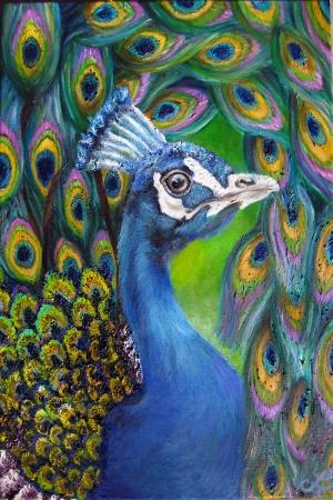 Tavuz Kuşu-3 Modern Sanat Kanvas Tablo