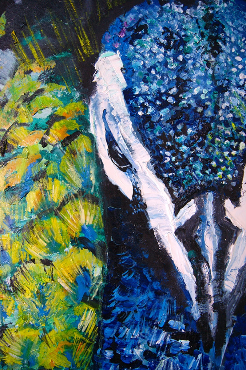 Tavuz Kuşu-4 Modern Sanat Kanvas Tablo