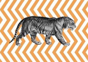 Tiger Popüler Kültür Kanvas Tablo