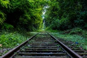Tren Rayı Doğa Manzaraları Kanvas Tablo