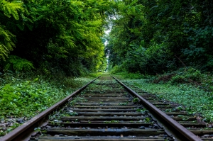 Tren Yolu Yeşil Orman Kanvas Tablo