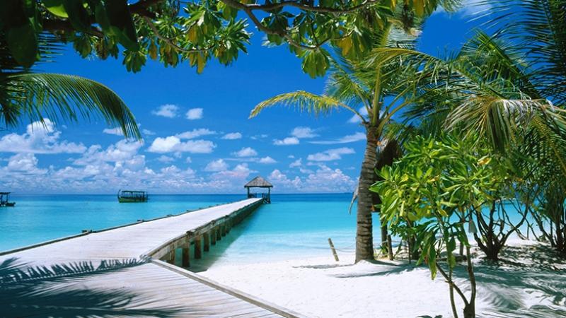 Tropikal Ada 2 Doğa Manzaraları Kanvas Tablo
