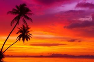 Tropikal Ada Gün Batımı Doğa Manzaraları Kanvas Tablo