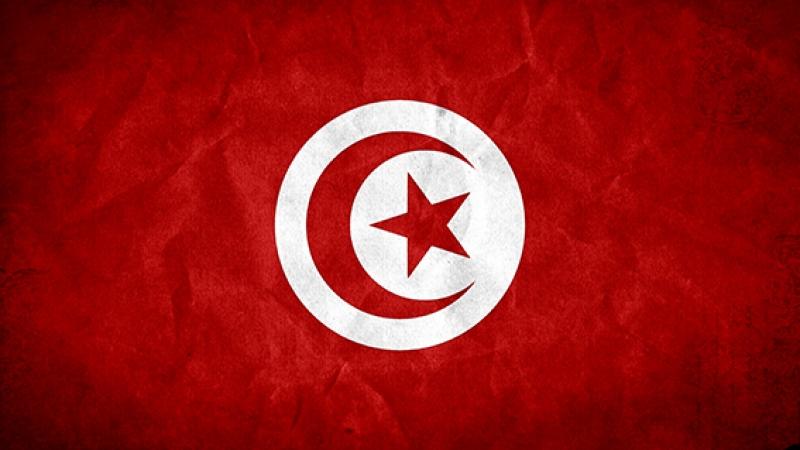 Tunus Bayrak Kanvas Tablo