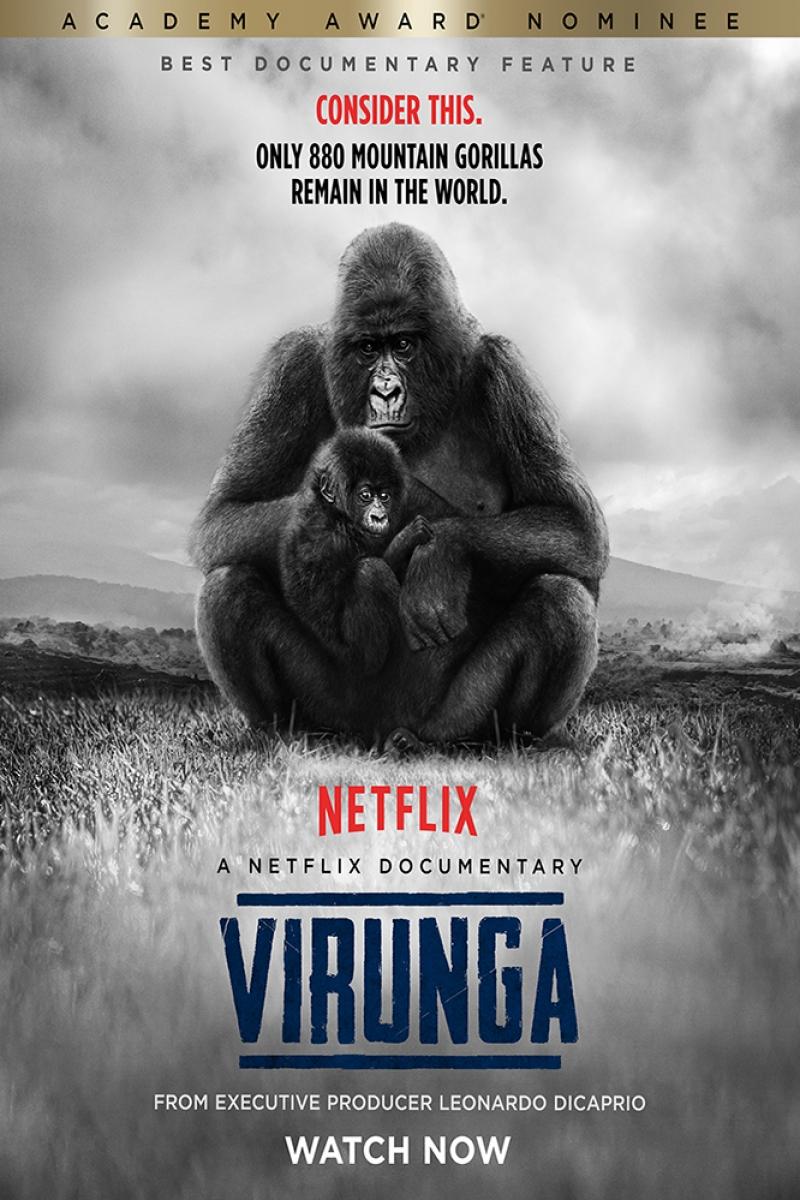 Virunga Film Afişi Sinema Kanvas Tablo