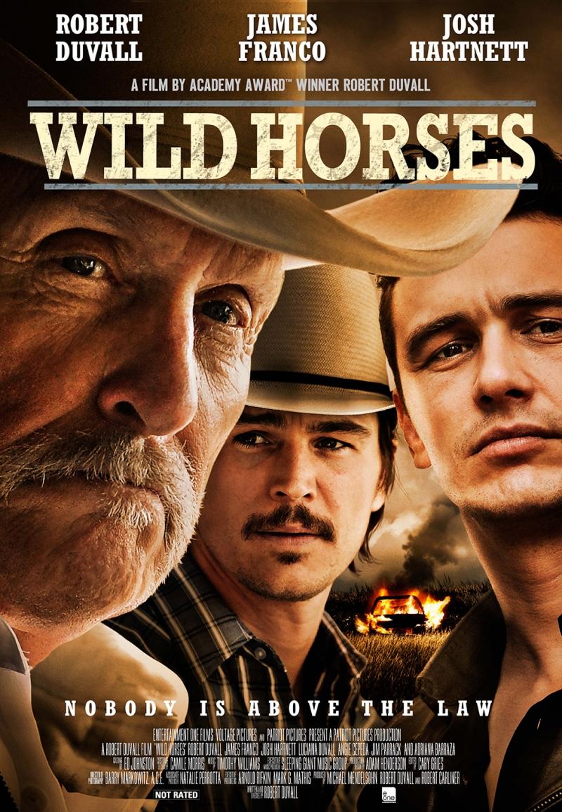 Wild Horses Sinema Kanvas Tablo