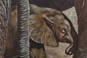 Yavru Filler Ve Fil Ailesi-107 Hayvanlar Modern Sanat Kanvas Tablo