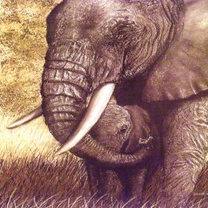 Yavru Filler Ve Fil Ailesi-109 Hayvanlar Modern Sanat Kanvas Tablo