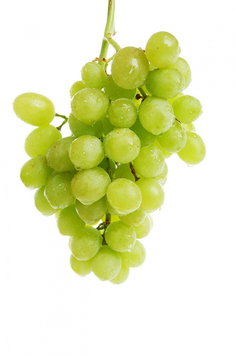 Yeşil üzüm Salkımı 1 Lezzetler Kanvas Tablo Arttablo