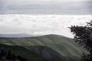 Yesil Vadi Doga Manzarasi Yagli Boya Sanat Kanvas Tablo